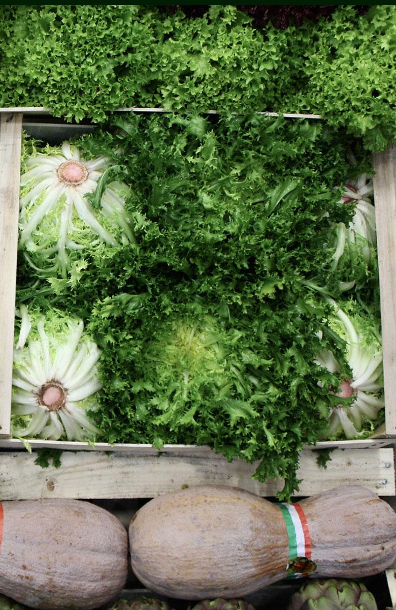 verdura ingrosso